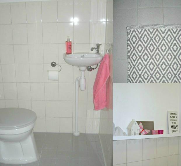 toilet-douche