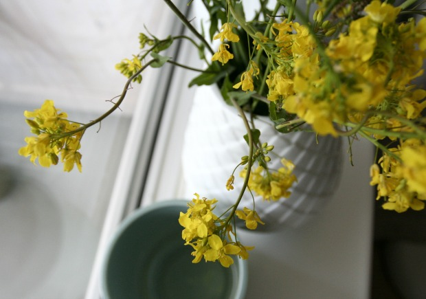 bloemen-geel